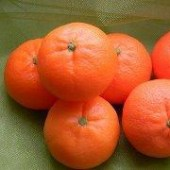 big_mandarin_11